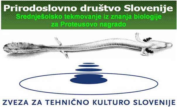 biologija-proteus